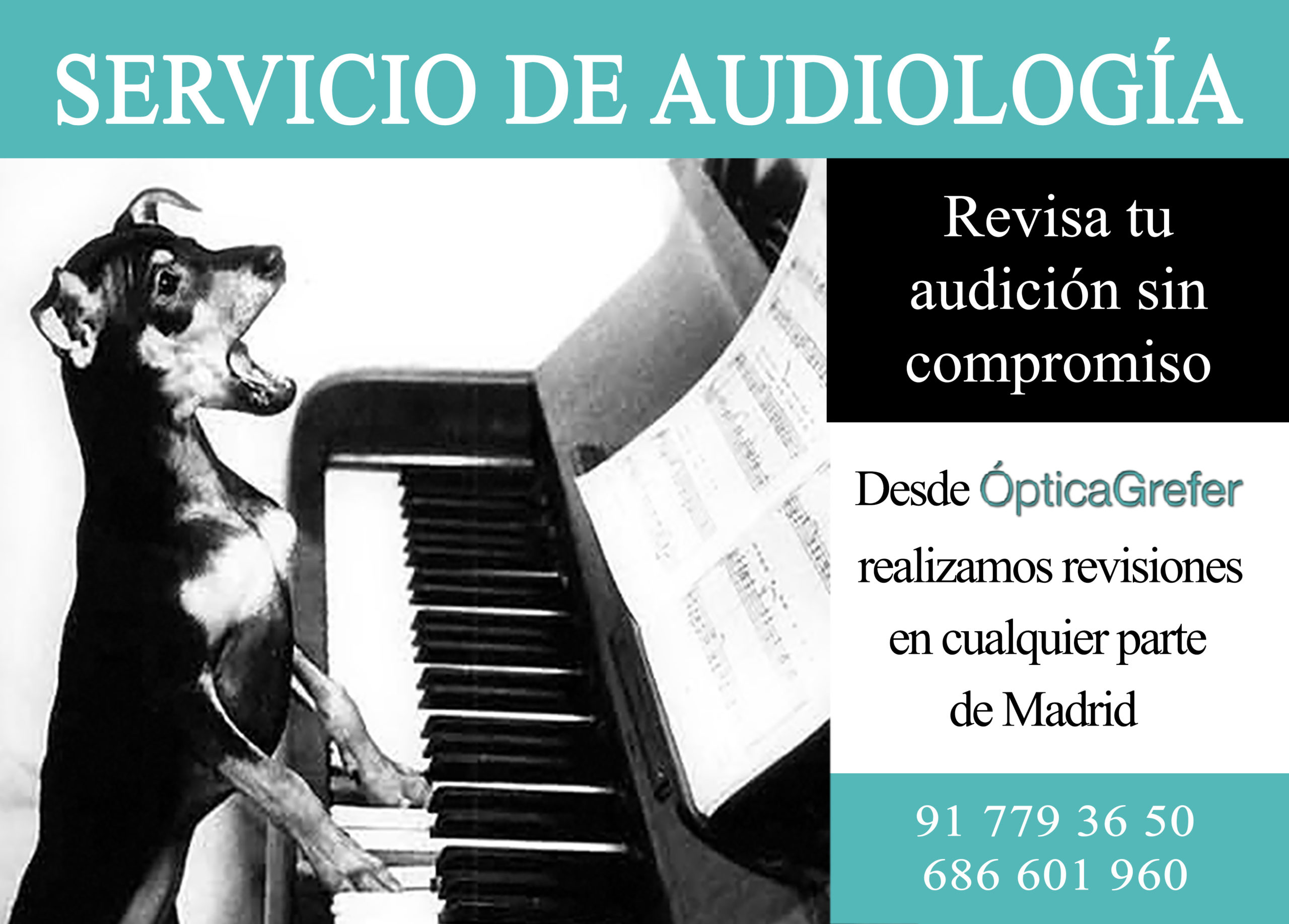 Audifonos Madrid